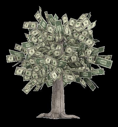 Money-Tree-Nobackground-400x431
